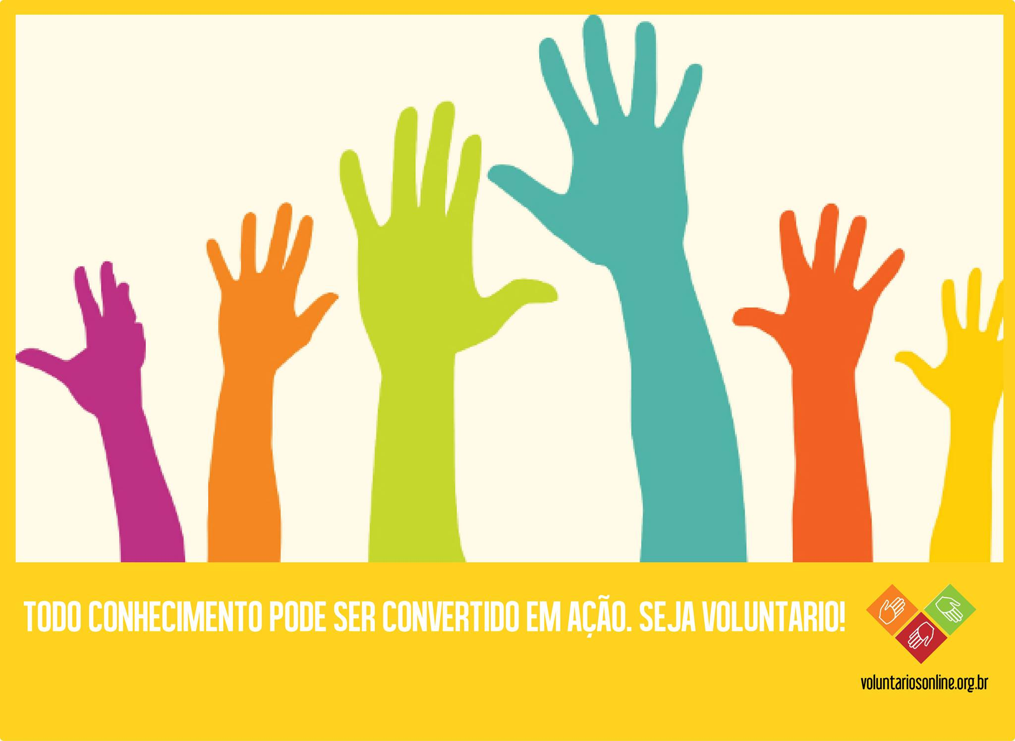 voluntariosonline
