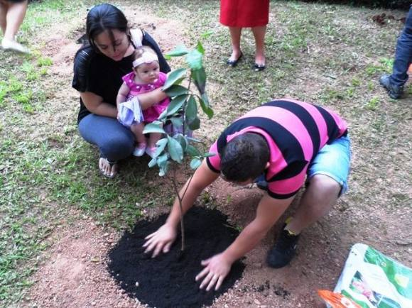 Uma árvore plantada para cada bebê nascido 1