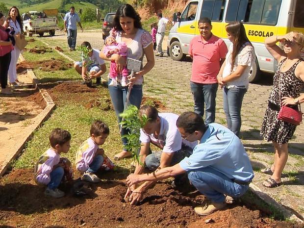 Uma árvore plantada para cada bebê nascido