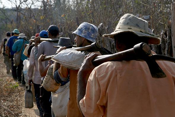 Grupo de trabalhadores resgatado do corte de madeira para a produção de carvão vegetal, no Ceará (Foto: MTE)
