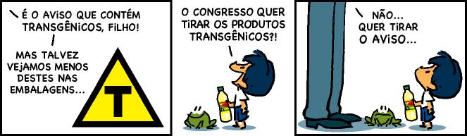 armandinho-transgenicos