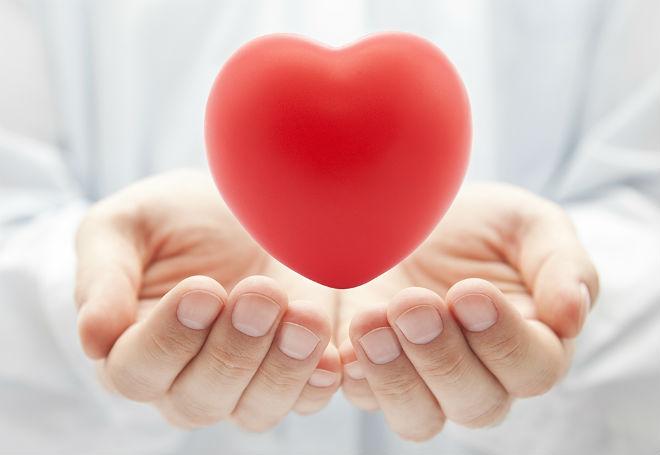 doadores de medula óssea