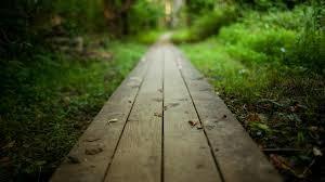 o-que-acontece-se-voce-seguir-os-seus-sonhos-caminho