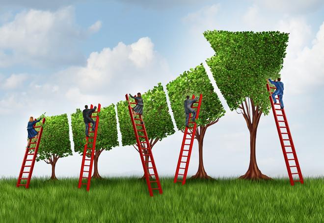 rede-de-investidores-sociais