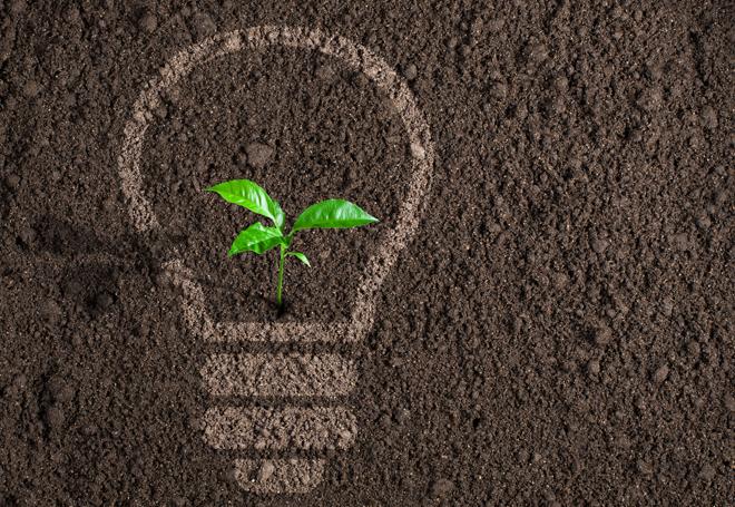 empreendedorismo-social-sustentabilidade
